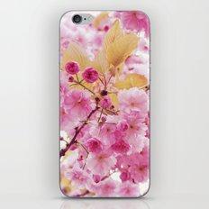 Bloom, bloom, bloom! iPhone & iPod Skin