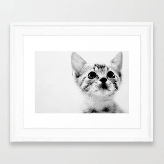 Sweet Kitten Framed Art Print
