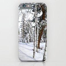 Colorado Scene iPhone 6 Slim Case