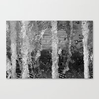 Forest of Fountains Canvas Print