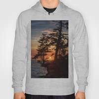 Sunset Through The Trees Hoody