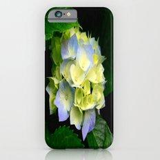 Hydrangea  Slim Case iPhone 6s