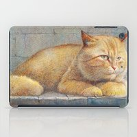 Ginger iPad Case