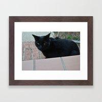 Black Cat Cross Your Pat… Framed Art Print