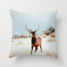 RMNP  Throw Pillow