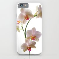 Orchid Spray iPhone 6 Slim Case