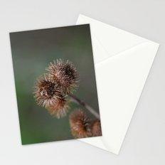 Piri Piri Burr Stationery Cards