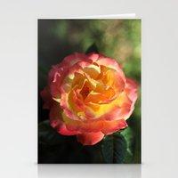 Rose 2599 Stationery Cards