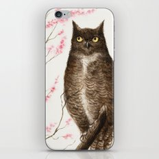 Spring Owl iPhone & iPod Skin