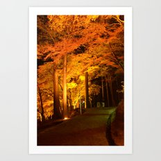 The Golden Path Art Print