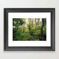 Hawaiian Rain Forest Framed Art Print