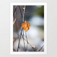 Last Leaf of Winter Art Print