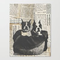 Basket-o-Bostons  Canvas Print