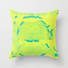 ++ Throw Pillow
