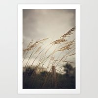 Wild Oats To Sow Art Print