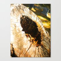 Fall Graveyard Canvas Print