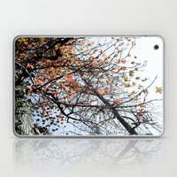 Fall II Laptop & iPad Skin