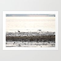 Scroll on the beach. Art Print