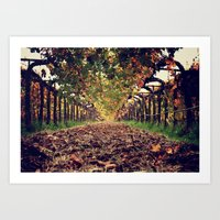 The Halls of Napa Art Print