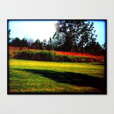 Picking the Straw from our Clothing Canvas Print