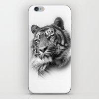 Tiger 2 iPhone & iPod Skin