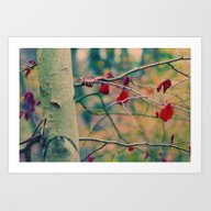 The Last Red Leaves Art Print