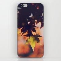 Fall dreams iPhone & iPod Skin