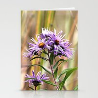 Aster Stationery Cards