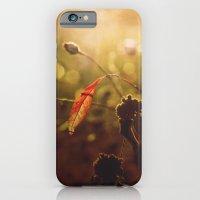 Beauty begins iPhone 6 Slim Case