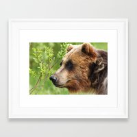 Smokey Sniffing the Breeze Framed Art Print