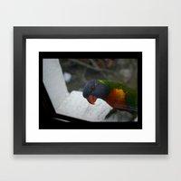 Pardon Me DPG150613b Framed Art Print
