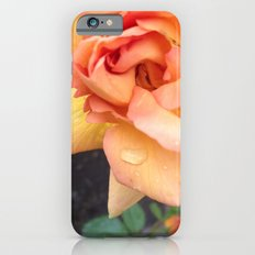 Orange Rose iPhone 6 Slim Case