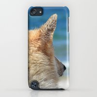 iPod Touch Cases featuring Dog at the beach by UtArt