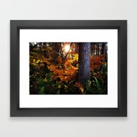 Autumn (in Scotland) Framed Art Print