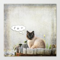 Kitty Thoughts Canvas Print
