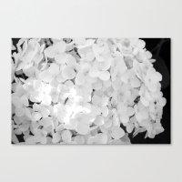 White Canvas Print