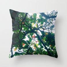 skylight Throw Pillow