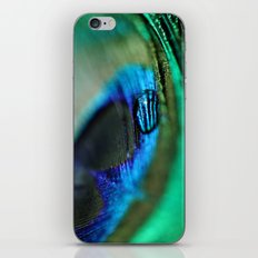 Water Drop on a Feather iPhone & iPod Skin