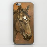 Sound Reason - Stallion iPhone & iPod Skin