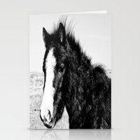 Mini Horse (2) Stationery Cards