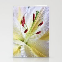 Lily Macro Stationery Cards
