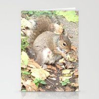 The Hungry Squirrel Stationery Cards