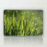 Green Grass and Morning Dew Drops Laptop & iPad Skin