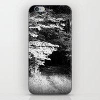 Do You Dare Follow? iPhone & iPod Skin