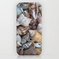 Seashells iPhone 6 Slim Case