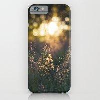 Golden light iPhone 6 Slim Case