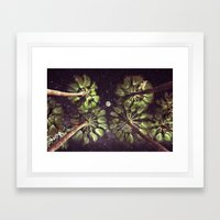 Elevated Paradise Framed Art Print