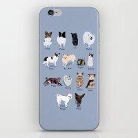 14 Dogs & Kitties iPhone & iPod Skin