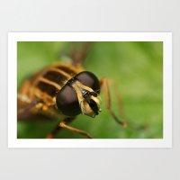 Bug-Eyed Art Print
