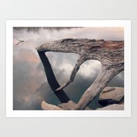 Suspended Reflection Art Print